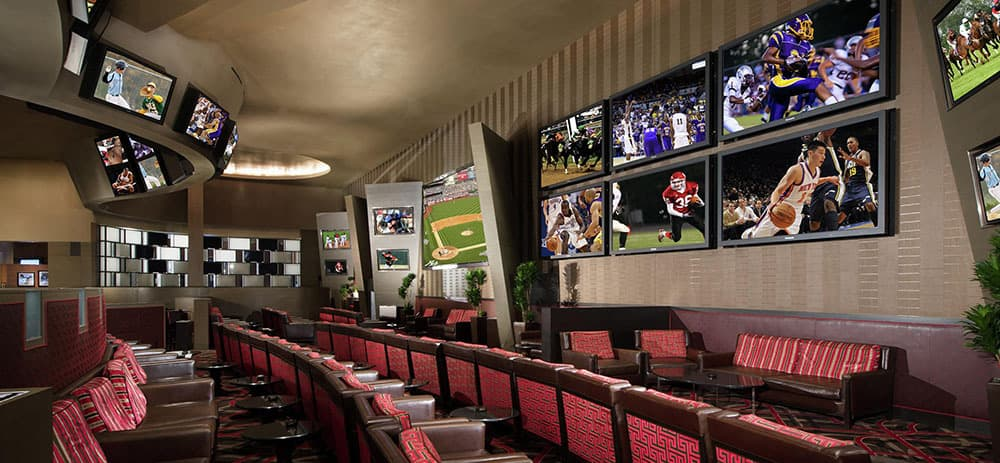 Aria Race and Sports Book Wall